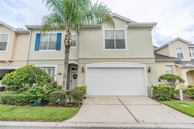 3504 Heards Ferry Drive, Tampa, FL 33618 (MLS #T3246363) :: Godwin Realty Group