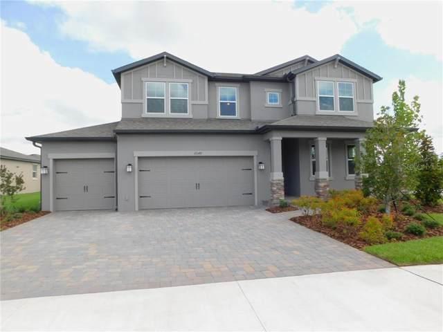12149 Homesteader Avenue, Odessa, FL 33556 (MLS #T3246376) :: Team Bohannon Keller Williams, Tampa Properties
