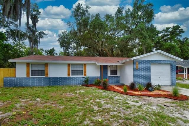 3503 Beechwood Boulevard, Tampa, FL 33619 (MLS #T3246394) :: Dalton Wade Real Estate Group
