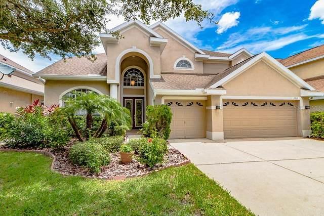 17833 Arbor Creek Drive, Tampa, FL 33647 (MLS #T3246439) :: Lockhart & Walseth Team, Realtors