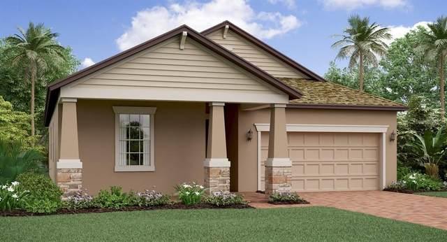 11415 Freshwater Ridge Drive, Riverview, FL 33579 (MLS #T3246443) :: Dalton Wade Real Estate Group