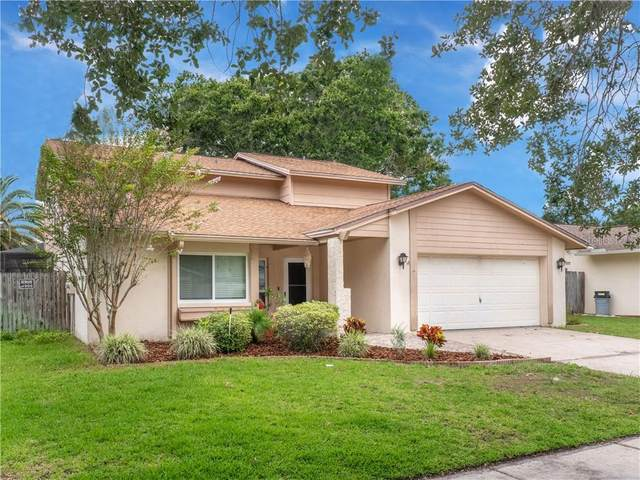 15708 Country Lake Drive, Tampa, FL 33624 (MLS #T3246483) :: Carmena and Associates Realty Group