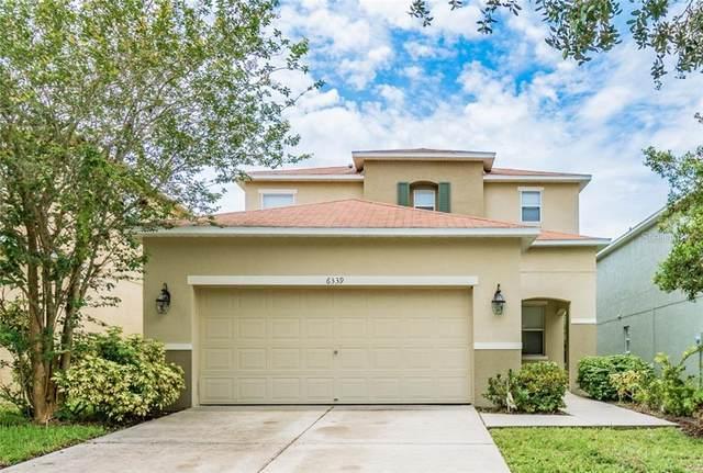6339 Magnolia Trails Lane, Gibsonton, FL 33534 (MLS #T3246504) :: Cartwright Realty