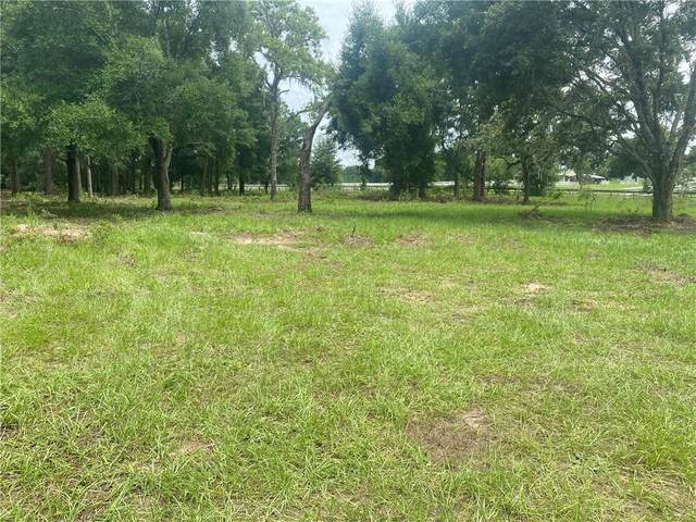 Trilby Trail, Dade City, FL 33523 (MLS #T3246535) :: Pepine Realty