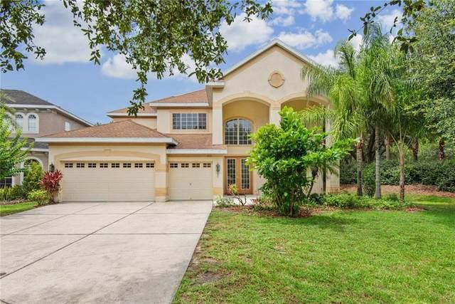 10110 Evergreen Hill Drive, Tampa, FL 33647 (MLS #T3246536) :: Team Bohannon Keller Williams, Tampa Properties