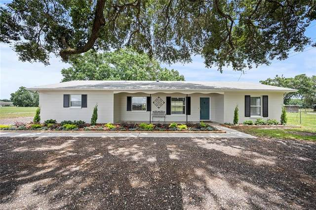4013 Gallagher Road, Dover, FL 33527 (MLS #T3246540) :: Team Borham at Keller Williams Realty