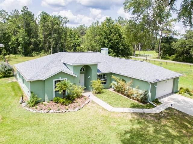 19489 Hidden Oaks Drive, Brooksville, FL 34604 (MLS #T3246562) :: Team Pepka