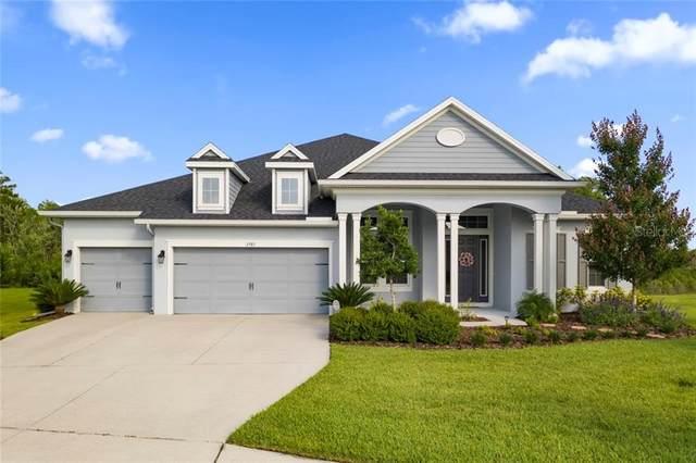 3985 Grand Lakeview Way, Land O Lakes, FL 34638 (MLS #T3246571) :: Team Bohannon Keller Williams, Tampa Properties
