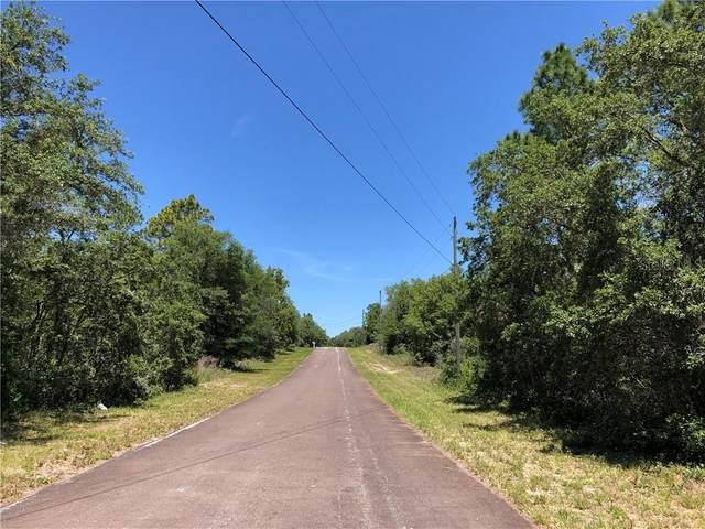 8229 & 8211 N Ibsen Drive, Citrus Springs, FL 34433 (MLS #T3246638) :: The Duncan Duo Team