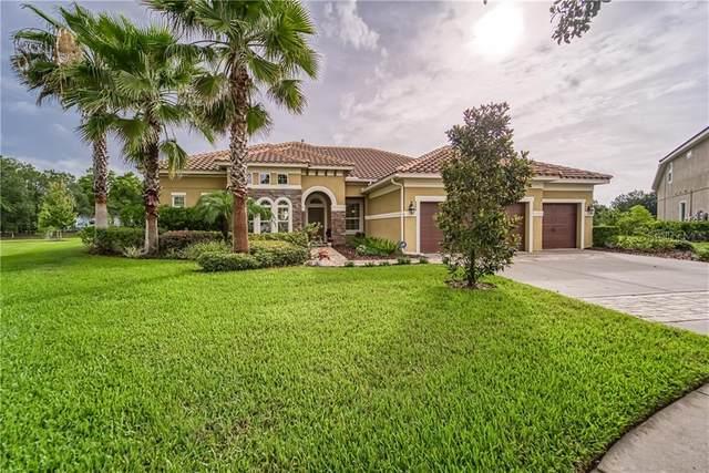 17429 Varona Place, Lutz, FL 33548 (MLS #T3246878) :: Griffin Group