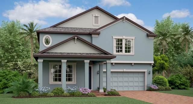 11417 Freshwater Ridge Drive, Riverview, FL 33579 (MLS #T3247051) :: Dalton Wade Real Estate Group