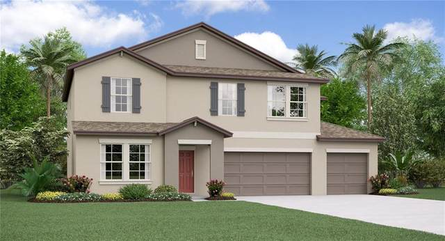 11906 Field Thistle Court, Riverview, FL 33579 (MLS #T3247098) :: Team Borham at Keller Williams Realty