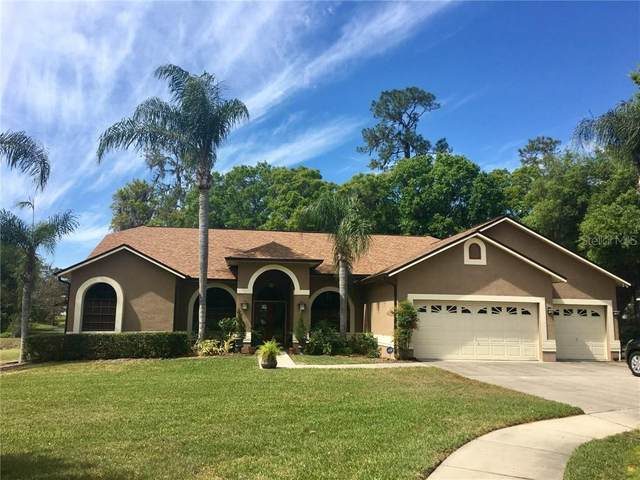 10113 Bell Creek Drive, Riverview, FL 33569 (MLS #T3247115) :: Griffin Group