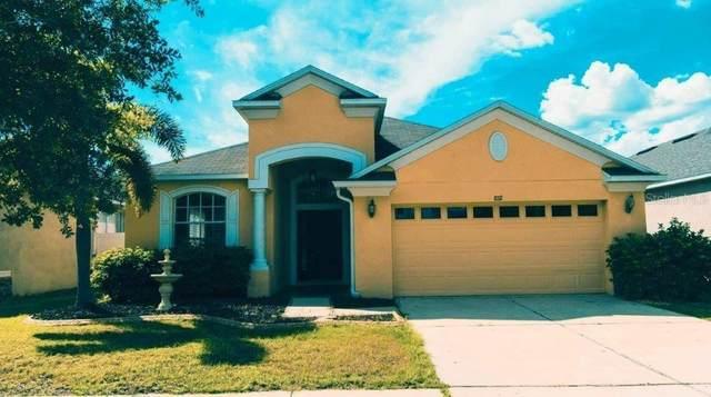 8712 Sandy Plains Drive, Riverview, FL 33578 (MLS #T3247188) :: Griffin Group