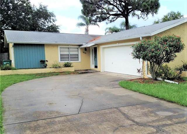 1830 Elaine Drive, Clearwater, FL 33760 (MLS #T3247399) :: Premium Properties Real Estate Services