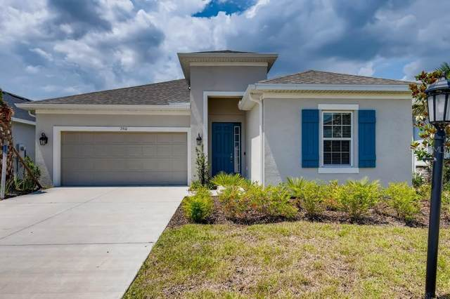 7910 Lotus Creek Court, Riverview, FL 33578 (MLS #T3247546) :: BuySellLiveFlorida.com