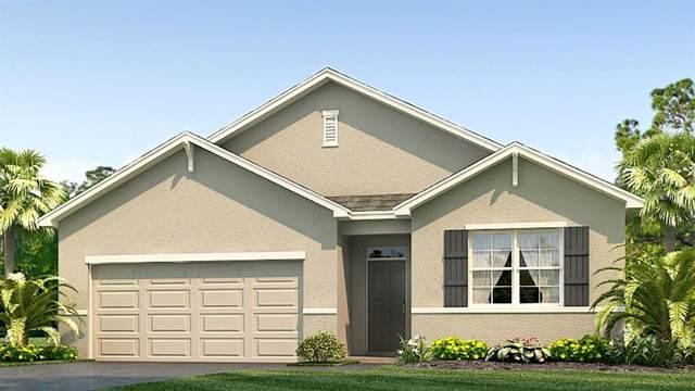 2452 Knight Island Drive, Brandon, FL 33511 (MLS #T3247813) :: Team Bohannon Keller Williams, Tampa Properties