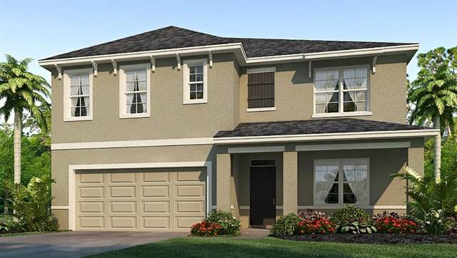 2454 Knight Island Drive, Brandon, FL 33511 (MLS #T3247825) :: Team Bohannon Keller Williams, Tampa Properties