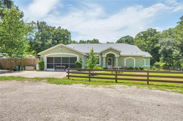 18411 Deason Drive, Spring Hill, FL 34610 (MLS #T3248312) :: Cartwright Realty