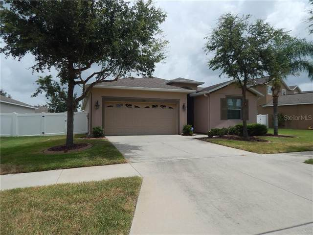 13821 Chalk Hill Place, Riverview, FL 33579 (MLS #T3248350) :: Cartwright Realty