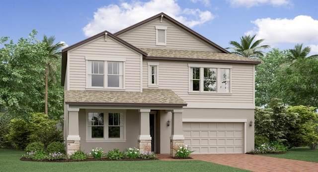8763 Flourish Drive, Land O Lakes, FL 34637 (MLS #T3248384) :: The Duncan Duo Team