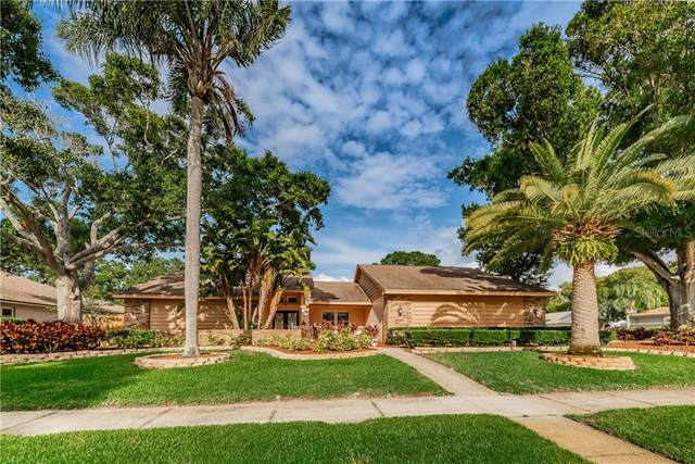 3411 Beech Trail, Clearwater, FL 33761 (MLS #T3248806) :: Heart & Home Group