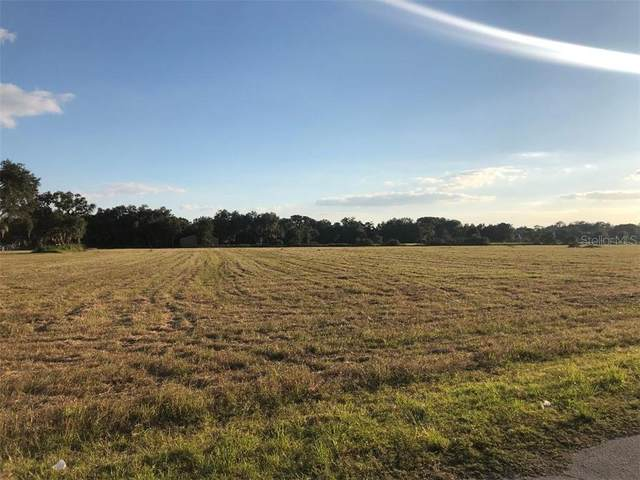 13823 Downing Street, Dover, FL 33527 (MLS #T3249028) :: Griffin Group