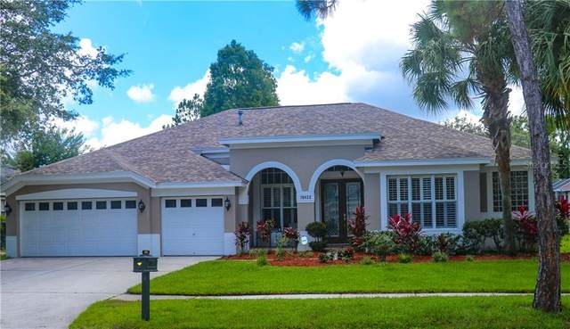 10422 Greenhedges Drive, Tampa, FL 33626 (MLS #T3249168) :: Medway Realty