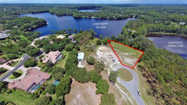 16135 Carencia Lane, Odessa, FL 33556 (MLS #T3249356) :: Florida Real Estate Sellers at Keller Williams Realty