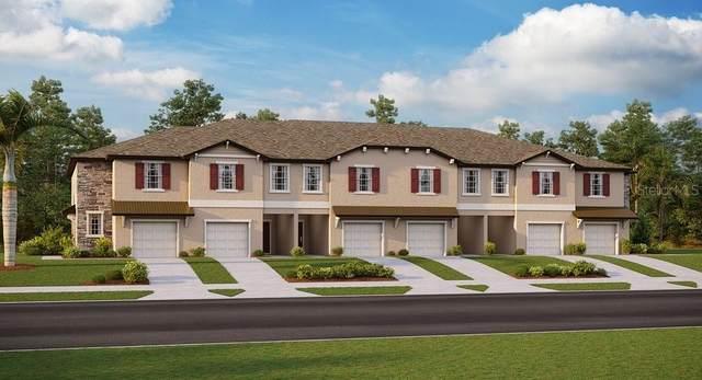 11724 Castine Street, New Port Richey, FL 34654 (MLS #T3249412) :: Team Bohannon Keller Williams, Tampa Properties