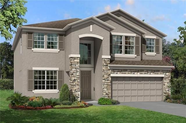 6584 Dutton Drive, Wesley Chapel, FL 33545 (MLS #T3249449) :: Griffin Group