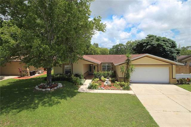 7806 Lakeside Woodlands Drive, Hudson, FL 34667 (MLS #T3249494) :: Dalton Wade Real Estate Group