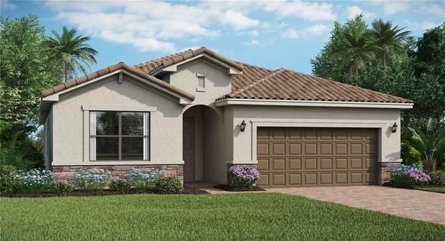 10149 Colubrina Drive, Venice, FL 34293 (MLS #T3249586) :: EXIT King Realty