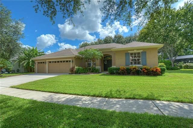 6124 Vireoridge Drive, Lithia, FL 33547 (MLS #T3249603) :: The Brenda Wade Team