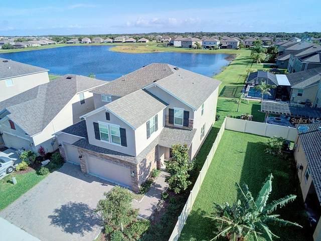 10130 Celtic Ash Drive, Ruskin, FL 33573 (MLS #T3249743) :: MavRealty
