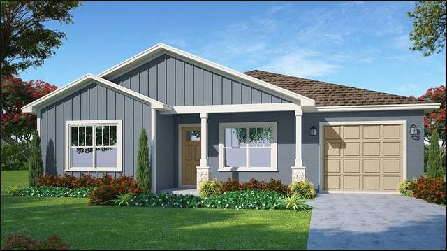 2605 E Cayuga Street 1/2, Tampa, FL 33610 (MLS #T3249744) :: Burwell Real Estate