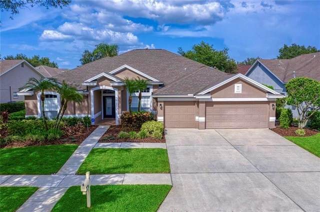 10262 Shadow Branch Drive, Tampa, FL 33647 (MLS #T3249767) :: Cartwright Realty