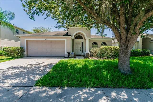 2802 Musky Mint Drive, Land O Lakes, FL 34638 (MLS #T3249809) :: GO Realty
