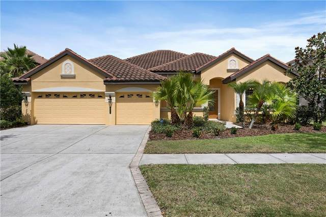 20107 Shady Hill Lane, Tampa, FL 33647 (MLS #T3249845) :: The Duncan Duo Team