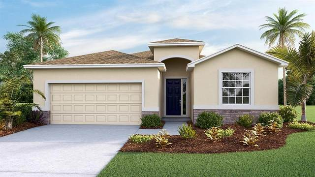 10958 Tally Fawn Loop, San Antonio, FL 33576 (MLS #T3249876) :: Delta Realty Int