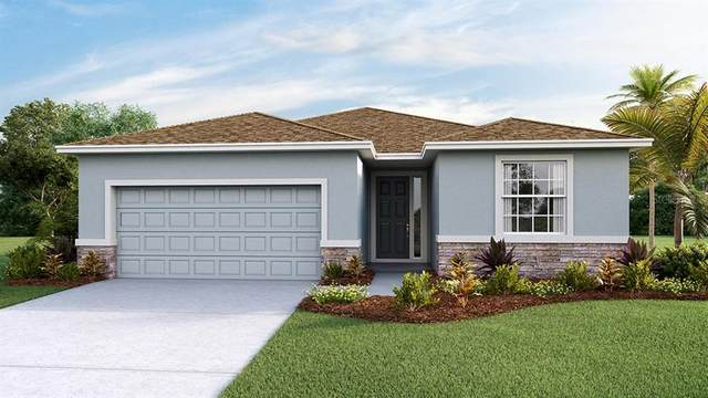 10961 Tally Fawn Loop, San Antonio, FL 33576 (MLS #T3249888) :: Delta Realty Int