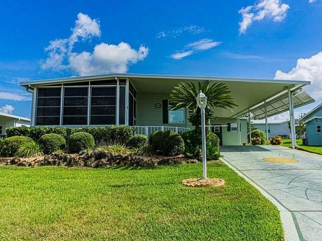 37539 Landis Avenue, Zephyrhills, FL 33541 (MLS #T3249936) :: Team Bohannon Keller Williams, Tampa Properties