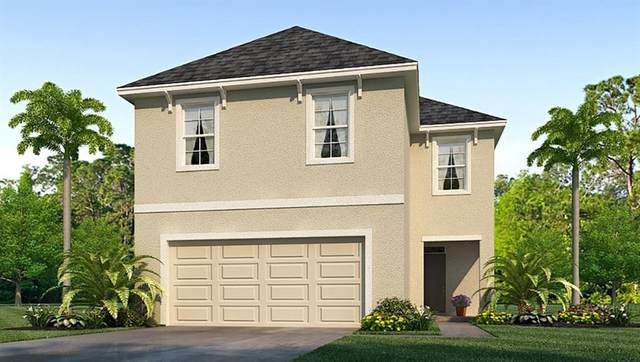 3110 Suncoast Blend Drive, Odessa, FL 33556 (MLS #T3249971) :: GO Realty