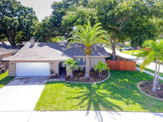 1790 E Orangeside Road, Palm Harbor, FL 34683 (MLS #T3250070) :: Homepride Realty Services