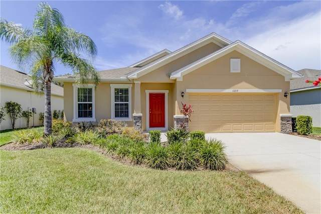 11219 Kiskadee Circle, New Port Richey, FL 34654 (MLS #T3250084) :: Dalton Wade Real Estate Group