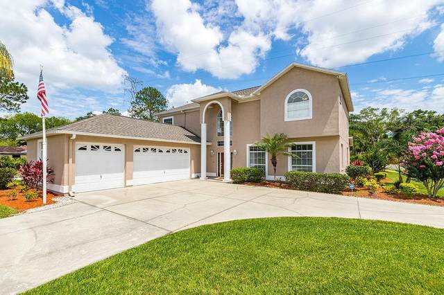 4612 Netherwood Drive, Tampa, FL 33624 (MLS #T3250086) :: Premium Properties Real Estate Services