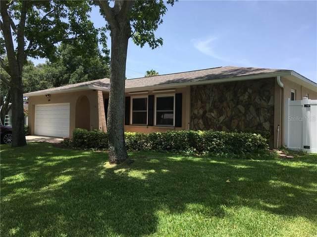 125 Cherry Laurel Drive, Palm Harbor, FL 34683 (MLS #T3250131) :: The Duncan Duo Team