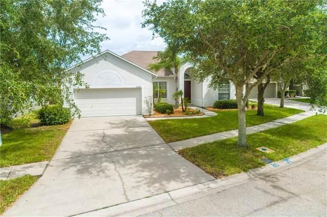 10807 Australian Pine Drive, Riverview, FL 33579 (MLS #T3250133) :: Burwell Real Estate