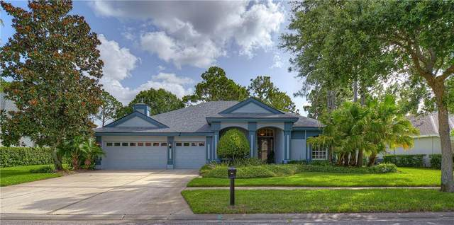10515 Greensprings Drive, Tampa, FL 33626 (MLS #T3250218) :: Medway Realty