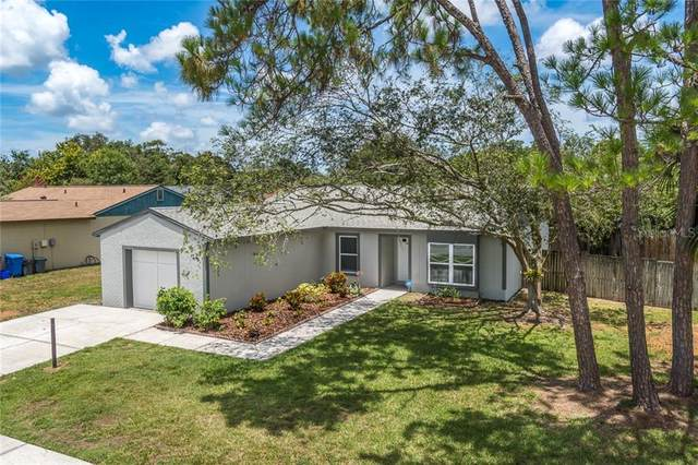 4901 Crofton Way, Tampa, FL 33625 (MLS #T3250230) :: Griffin Group